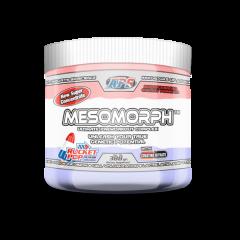 Mesomorph 25 serv